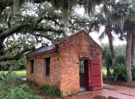 """New Exhibit """"Generate"""" open at Old Baldy"""