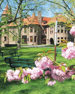 Felician campus.JPG