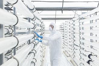 Engineer in Laboratory