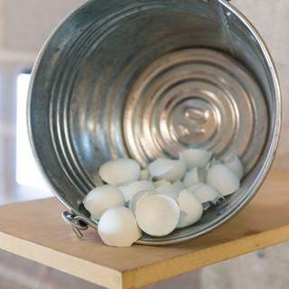 bucket eggshells.jpg
