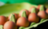 final Eggs.png