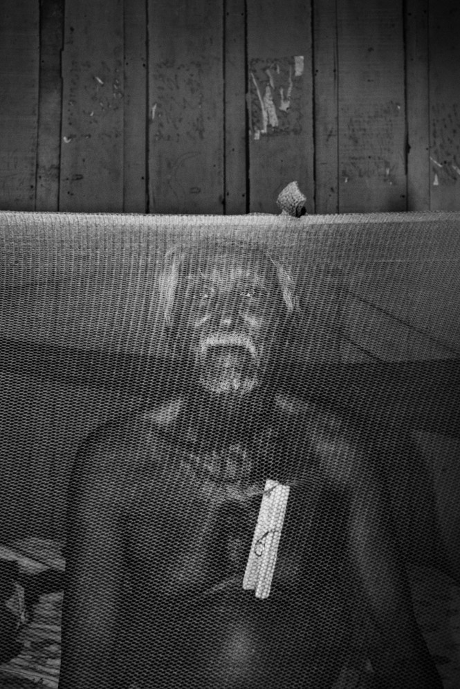 "Francisco Pereira dos Santos, 88, sits under a mosquito net in Machadinho d'Oeste, Rondônia state. He's one of the last surviving ""rubber soldiers"" of the region, who were conscripted to collect rubber for the war effort during the 1940s. He went blind in 2005 and was forced to leave the forest and move to the city. ""Our way of life is already extinct,"" he says, ""the only right poor people have is to die."""