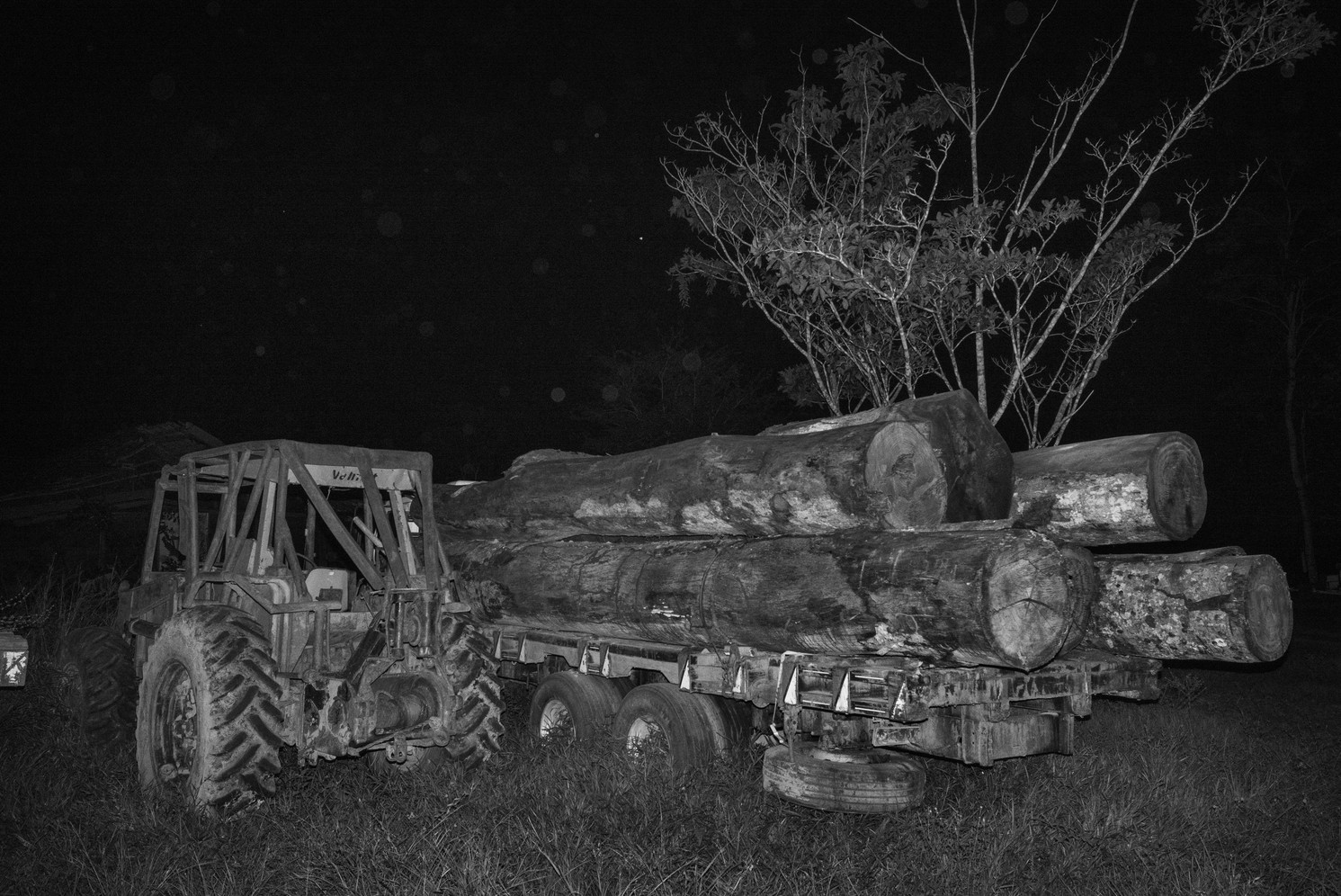 Truck of illegal timber seized in the Jamari National Forest in Rondônia state which is constantly targeted by illegal loggers. Once the loggers have removed the wood from the forest, it's taken to nearby irregular sawmills. Using falsified documents, it's then sent to Brazil's industrialized south or abroad to Europe, China or the United States. Deforestation is on the rise again in the Brazilian Amazon, after successive years of fall, following deep cuts to environmental protection agencies.