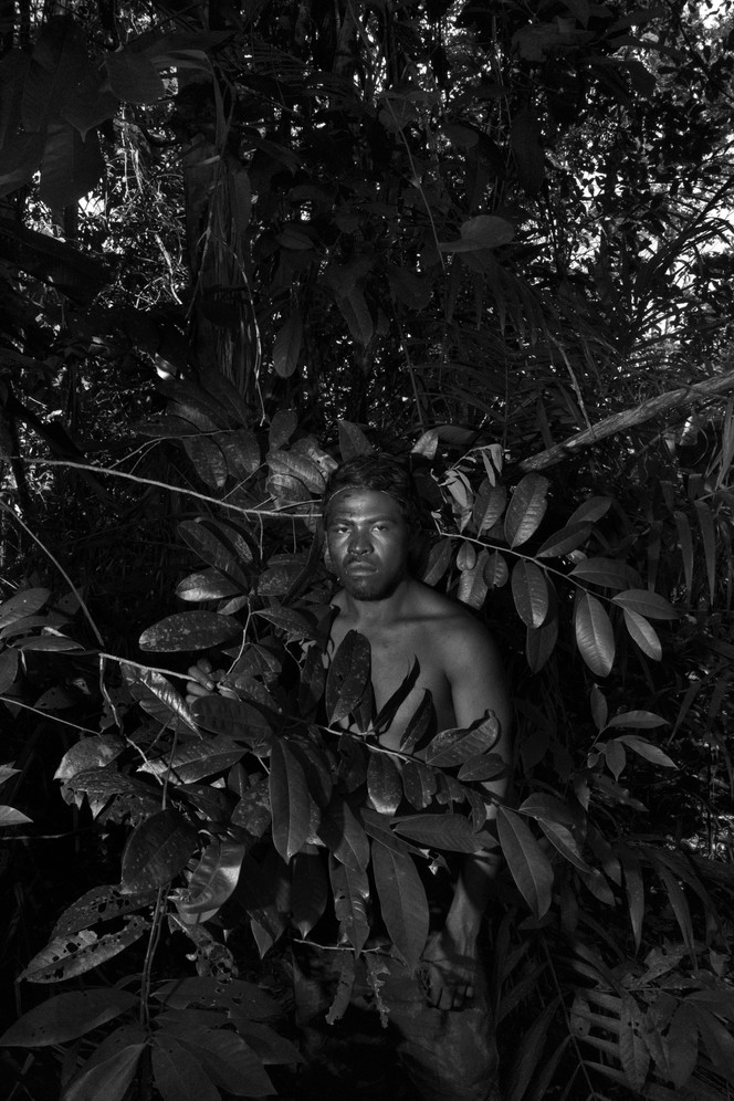 """Paulo Paulinho Guajajara (25), a.k.a Lobo Mau (""""bad wolf""""), was killed on November 1st 2019 in an ambush by illegal loggers inside the Arariboia Indigenous Land. He was member of the Guajajara forest guard at the Araribóia indigenous reserve in Maranhão state. For several towns in the surrounding region, the local economy is based largely on illegal timber and irregular sawmills provide jobs for poor, unskilled workers. Indigenous activists who confront logging interests routinely suffer harassment, threats and even murder."""