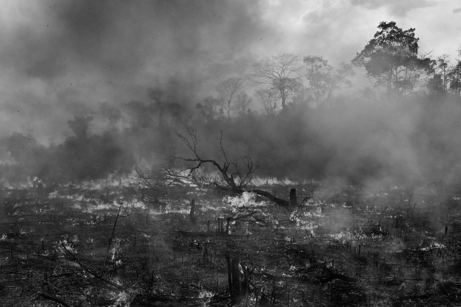 A fire rages on the Porquinhos indigenous land, home to the Canela Apanyekrá tribe, in Maranhão state. This fire was started as a training exercise for local indigenous agents of Prevfogo, a fire prevention unit of the Brazilian Institute of Environment and Renewable Natural Resources (Ibama). Fire is used in traditional farming practices to replenish soils after crops have been harvested. But often, with strong winds, the fires spread out of control and destroy forests and vegetation. This is a problem that scientists say is getting worse with the extreme weather conditions of climate change where dry seasons are becoming more intense and extended.