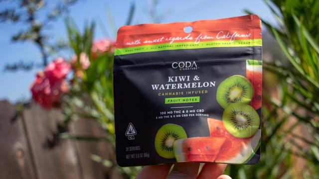 Coda Kiwi and Watermelon.png