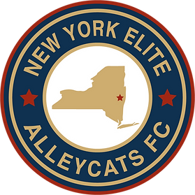 NY Elite Alleycats FC Logo.png