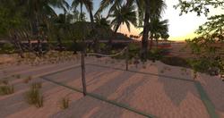 volleyball _ sundown