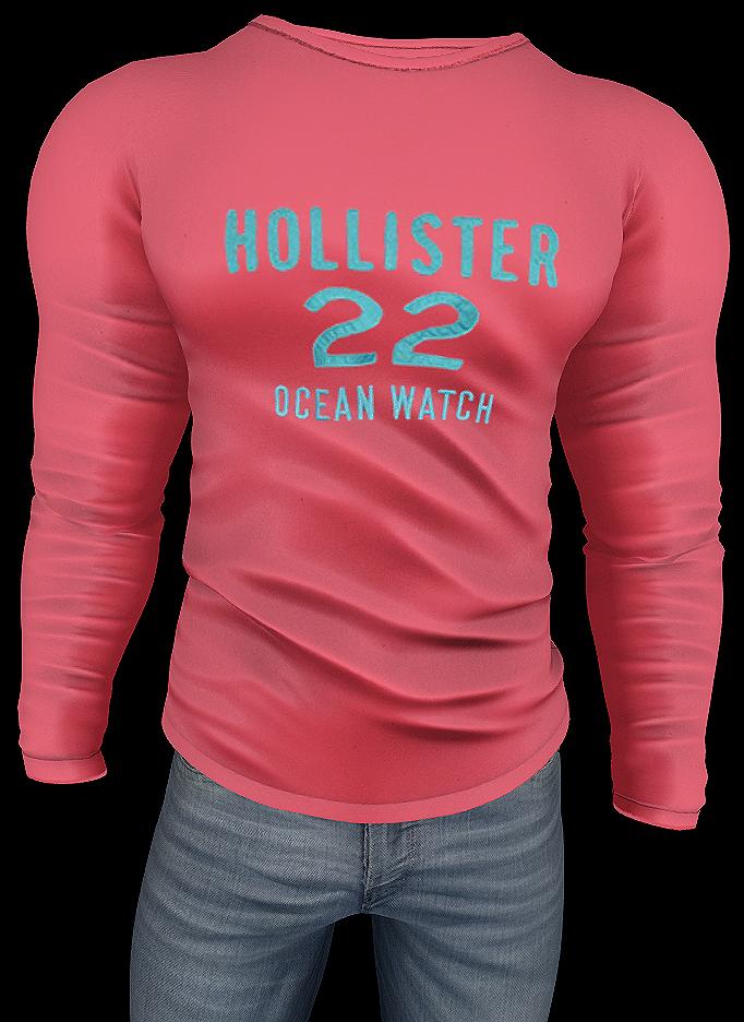 Hollister 22 - Ocean Watch ps