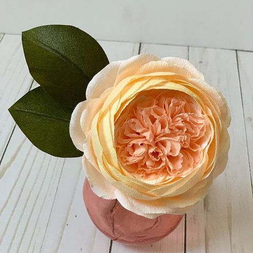 Petite Juliet Rose vase