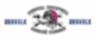Brovolk Logo New Pink.png