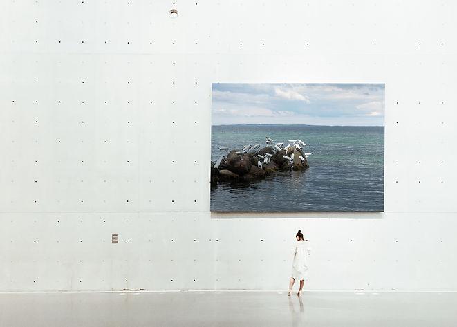 exibição de arte