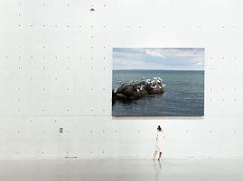 Museum, Gallerie