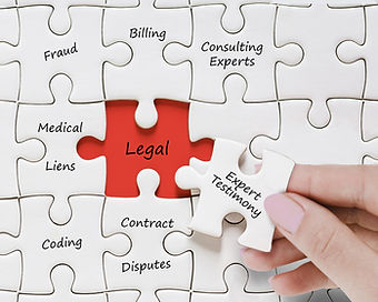 legal and compliance support