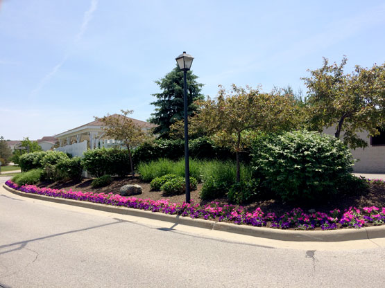 Herron Springs neighborhood
