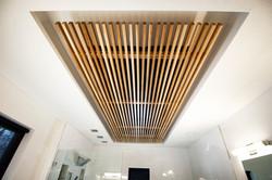 bath-ceiling