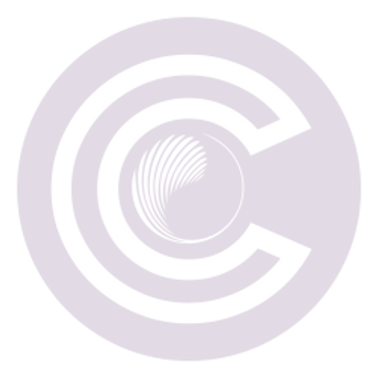 CindCEO_20%icon.png