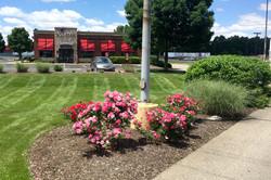 applebees lawn maintenance