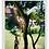 Thumbnail: ידית טלסקופית 3 מטר WOLF-Garten