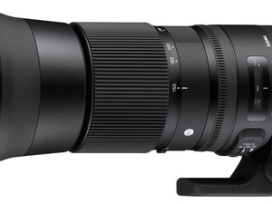 Gear Review - Sigma 150-600mm Contemporary