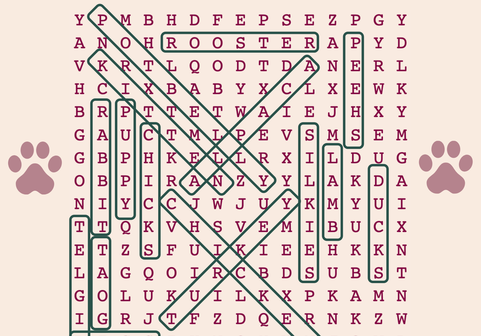 Word Search 5