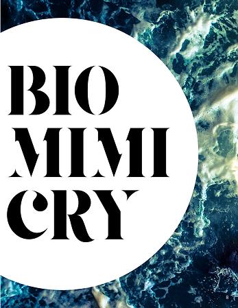 Biomimicry Spread2.png