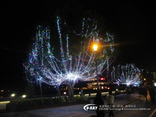 樹木掛燈 | Coray