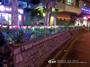 戶外燈飾 | 花朵燈 | Coray