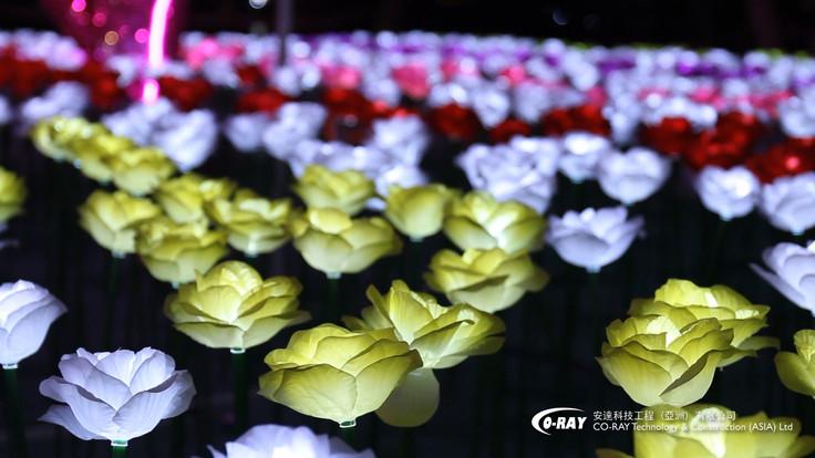 節日燈飾 | 花朵燈 | Coray