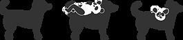 pannda dog methamorphosis.png