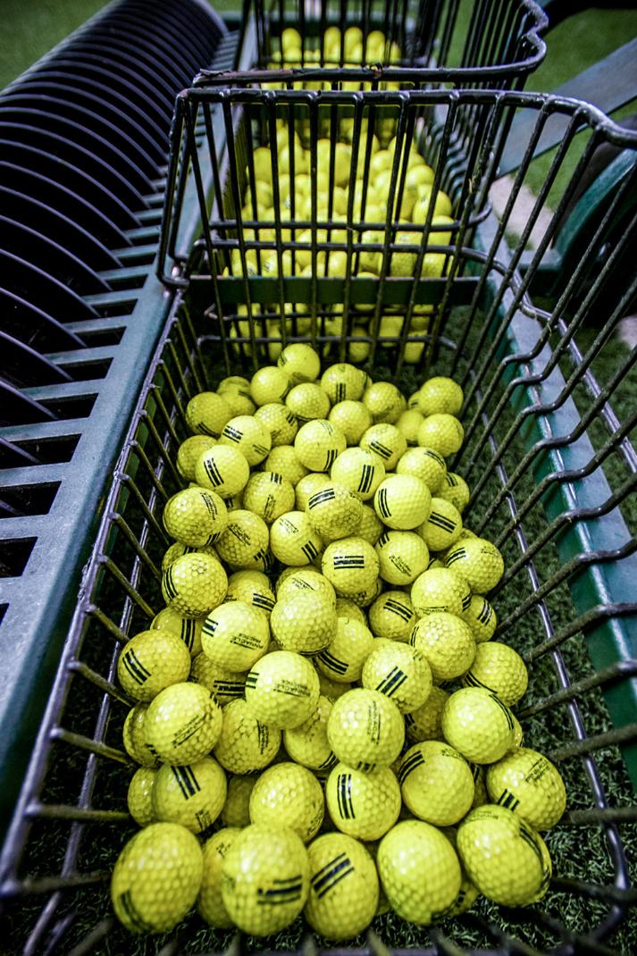 golfballsin cart