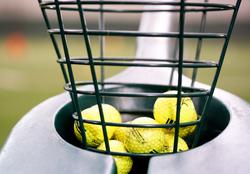 golfballsinbasket