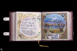 Pere Shira Detail