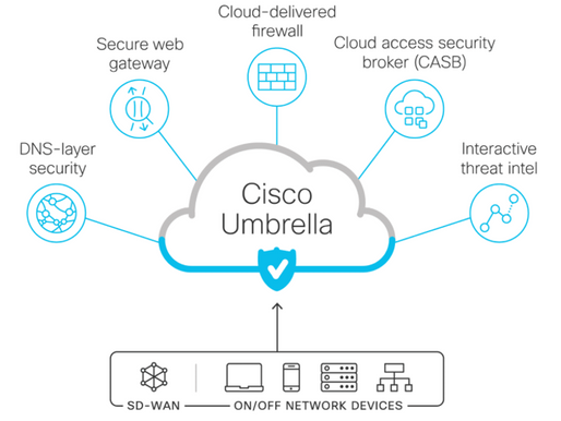 Flexible, fast, and effective cloud-delivered security