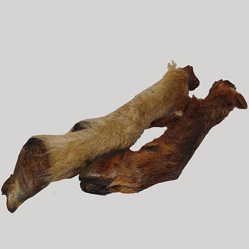 Roe Deer Feet with fur x10