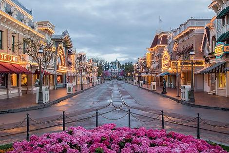 Image Courtesy of Disneyland Resort.jpg
