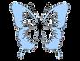 1-10830_blue-butterfly-clip-art-at-clker