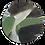 Thumbnail: TORTOISESHELL SAGE PLATE
