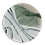 Thumbnail: BIRCH FOREST COASTER
