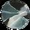 Thumbnail: TORTOISESHELL GLACIER PLATE