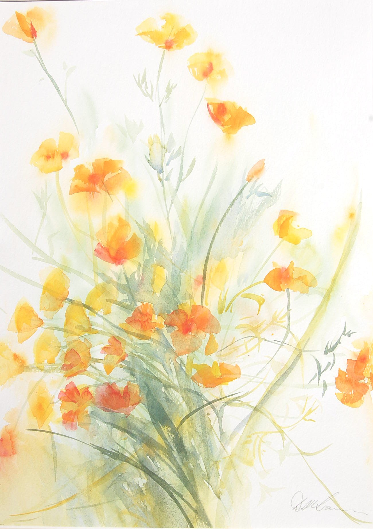 California Poppies (36cmx50cm)