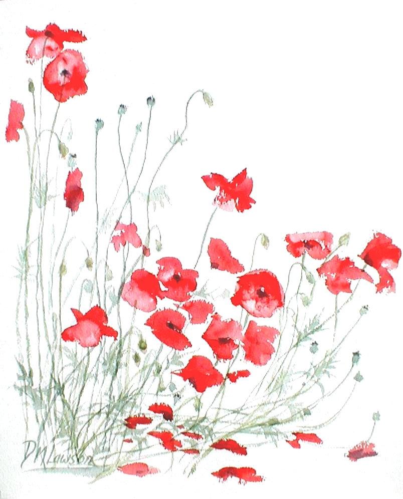 Poppies (39cm x 61cm)
