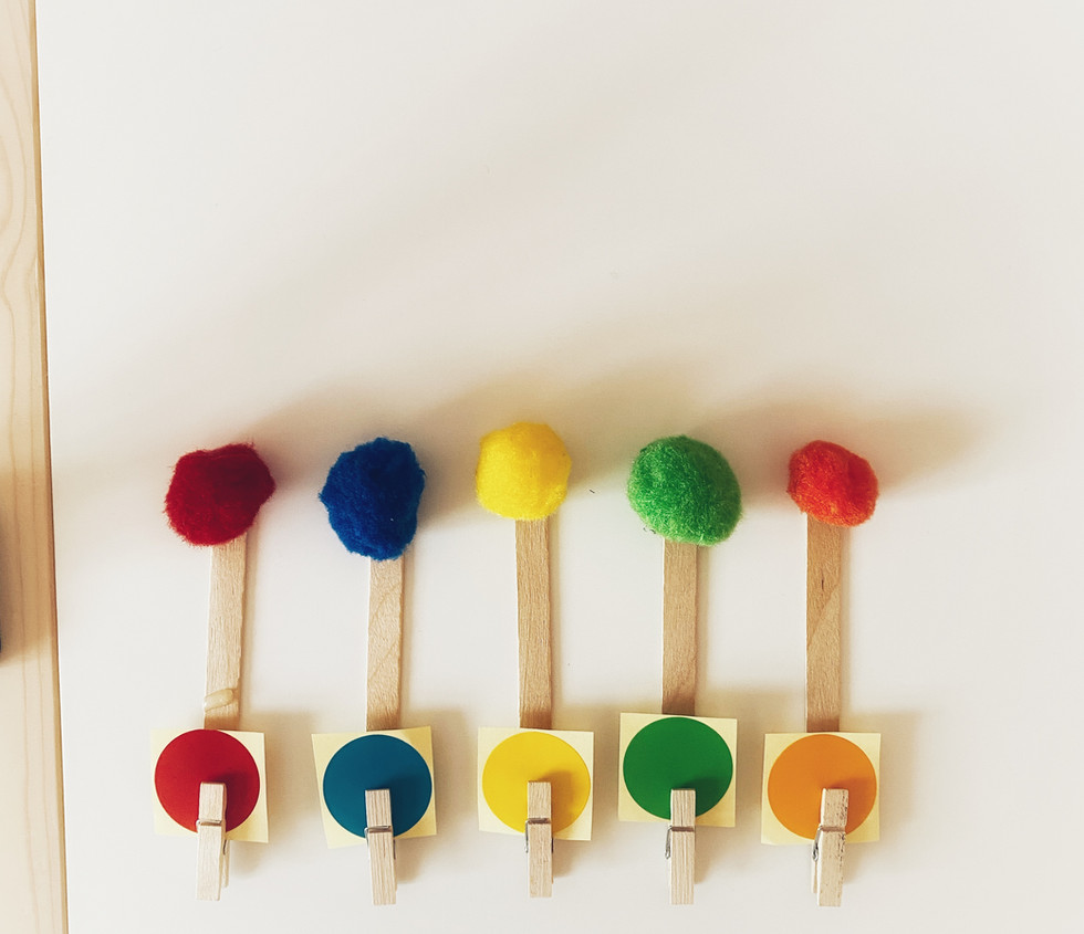 Colour Pom Poms