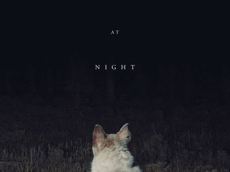 """""""It Comes at Night:"""" An Unconventional Contemplation on Death"""