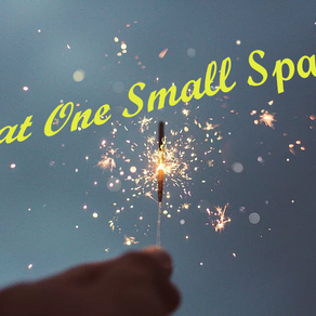 Nicole Wills, Editor-in-Chief & Blogger   THAT ONE SMALL SPARK #1