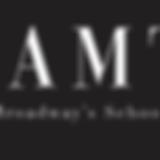 IAMT Brochure logo 2019.png