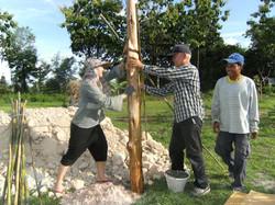 04.-erecting-poles