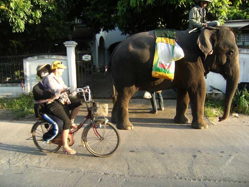 Riding to town (Doi Saket)