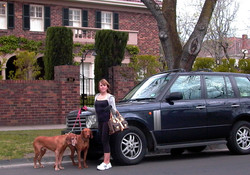 Toorak Housewife (man overseas)
