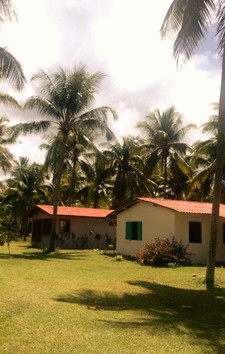 Our bungalows immersed in nature